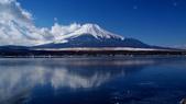 富士山~風景~花.植物~:12_09.jpg