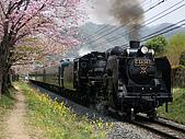 蒸汽老火車.所有火車:09178.jpg