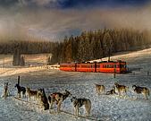蒸汽老火車.所有火車:圖片6.jpg