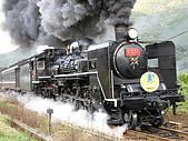 蒸汽老火車.所有火車:91005.jpg