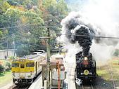 蒸汽老火車.所有火車:091105.jpg
