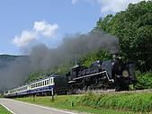 蒸汽老火車.所有火車:091108.jpg