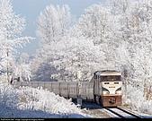 蒸汽老火車.所有火車:圖片8.jpg