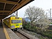 蒸汽老火車.所有火車:17582.jpg