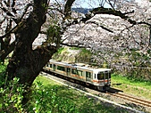 蒸汽老火車.所有火車:17584.jpg