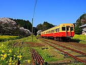 蒸汽老火車.所有火車:17615.jpg