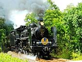 蒸汽老火車.所有火車:15969.jpg