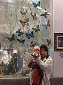 20091122彰化台灣玻璃博物館:DSCF0395.jpg