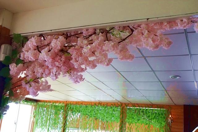 DSCF6603.JPG - 森林花園