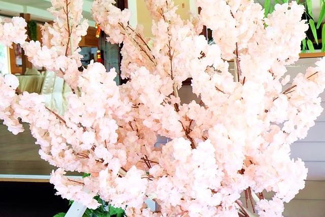 DSCF6596.JPG - 森林花園