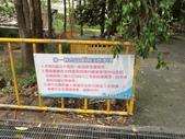 走馬瀨農場:CIMG0873.JPG