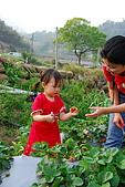 2009.03.21鯉魚潭水庫,大湖草莓:DSC_9750.JPG