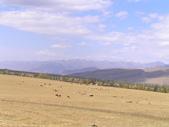 新疆那拉提草原:那拉提.jpg
