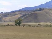 新疆那拉提草原:那拉提24.jpg
