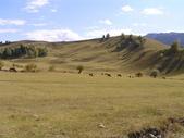 新疆那拉提草原:那拉提29.jpg