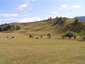 新疆那拉提草原:那拉提30.jpg