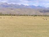 新疆那拉提草原:那拉提34.jpg