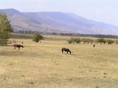 新疆那拉提草原:那拉提038.jpg