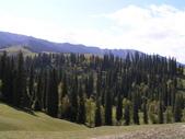 新疆那拉提草原:那拉提056.jpg