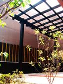 [日本人工強化竹]中和圓通路:美空設計-南方松雨遮