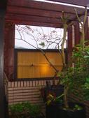 [日本人工強化竹]木柵政大二街:美空設計-庭園