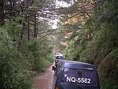 野豹車隊95年10月郡大林道活動:DSCN1080