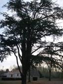 巴黎近郊 Fontenay-Les-Briis 城堡:1086066287.jpg