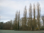 巴黎近郊 Fontenay-Les-Briis 城堡:1086066289.jpg