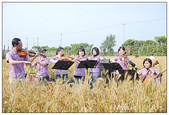 20100313麥田狂想曲Ⅱ:麥田狂想曲Ⅱ (45).jpg