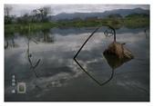 濕地風情~2:濕地風情-103.jpg
