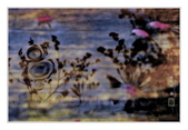 櫻花の戀:櫻花夢影-43.jpg