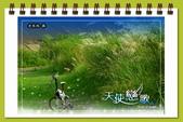 秋季戀歌:秋之戀-09.jpg