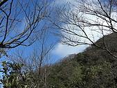 20080111北插天山:CIMG0085.JPG
