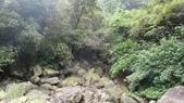 120422跑馬古道鴻子山:DSC02555.JPG