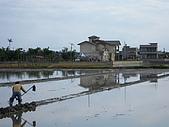 20081207礁溪林美石糟:LPK081207 (2).JPG