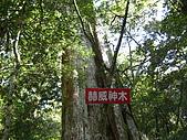 20080111北插天山:CIMG0076.JPG