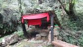 120422跑馬古道鴻子山:DSC02548.JPG