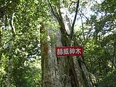 20080111北插天山:CIMG0077.JPG