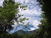 宜蘭左得寒山980628:DSC04245.JPG