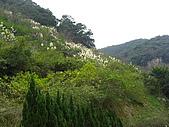 20081228石碇烏月山:081228烏月山 (24).JPG