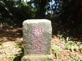 110723白雞三山:DSC00362.JPG