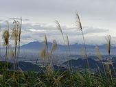 20090104鳥來菜刀崙山向天湖山:20090104菜刀崙山 (16).JPG