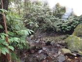 110702富士溪頭前溪:DSC00075.JPG
