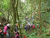 20081228石碇烏月山:081228烏月山 (11).JPG