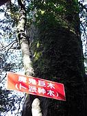 20080111北插天山:CIMG0073.JPG