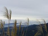 20090104鳥來菜刀崙山向天湖山:20090104菜刀崙山 (18).JPG