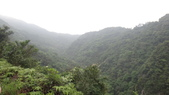 120422跑馬古道鴻子山:DSC02546.JPG
