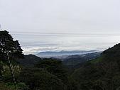 20090104鳥來菜刀崙山向天湖山:20090104菜刀崙山 (20).JPG