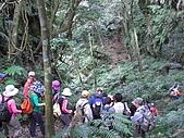 20081228石碇烏月山:081228烏月山 (13).JPG