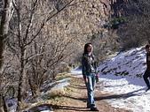 美國錫安國家公園:DSCN7412